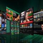 Descubra 5 orientações futuras da indústria de apostas desportivas
